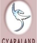 Cyaraland.Com